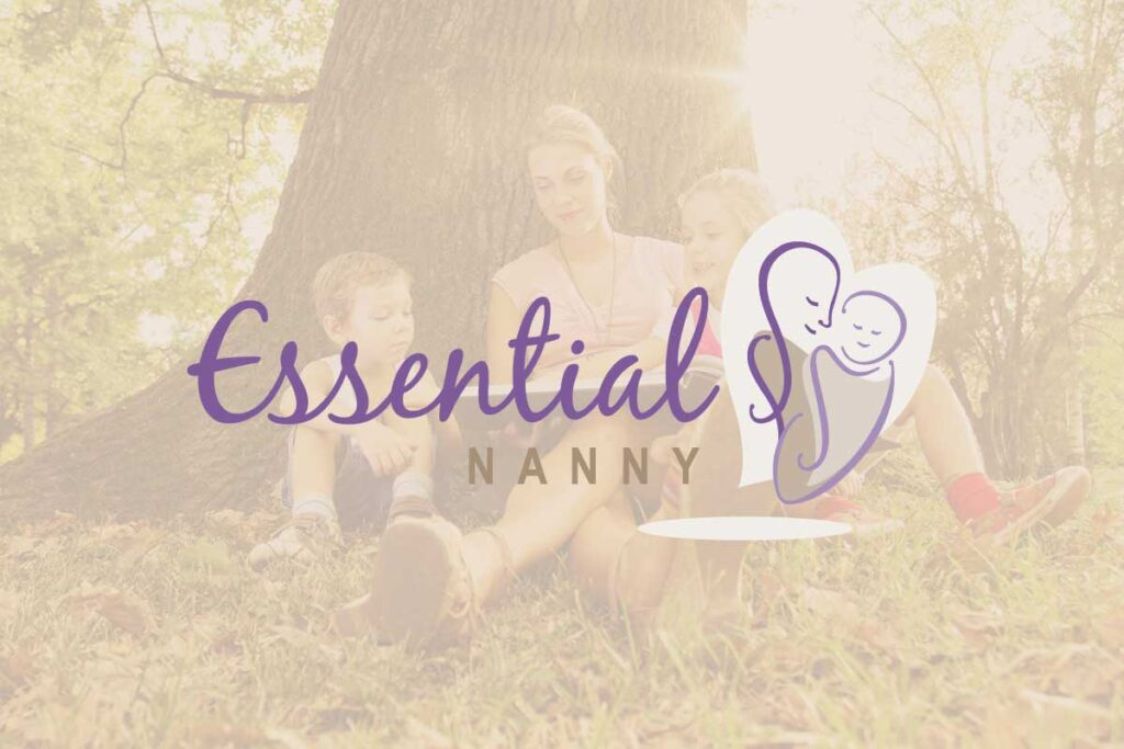WordPress website, Rapid Websites, Essential Nanny