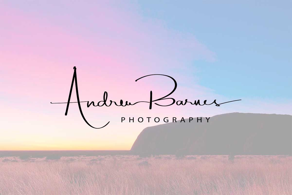 WordPress website, Rapid Websites, Andrew Barnes Photography